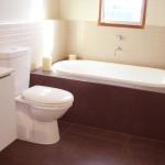 Стоит ли объединять ванную и туалет