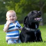 Собака для ребенка: плюсы и минусы