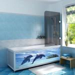 Экраны для ванны: правила выбора и применения